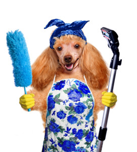 hypoallergenic cleaning